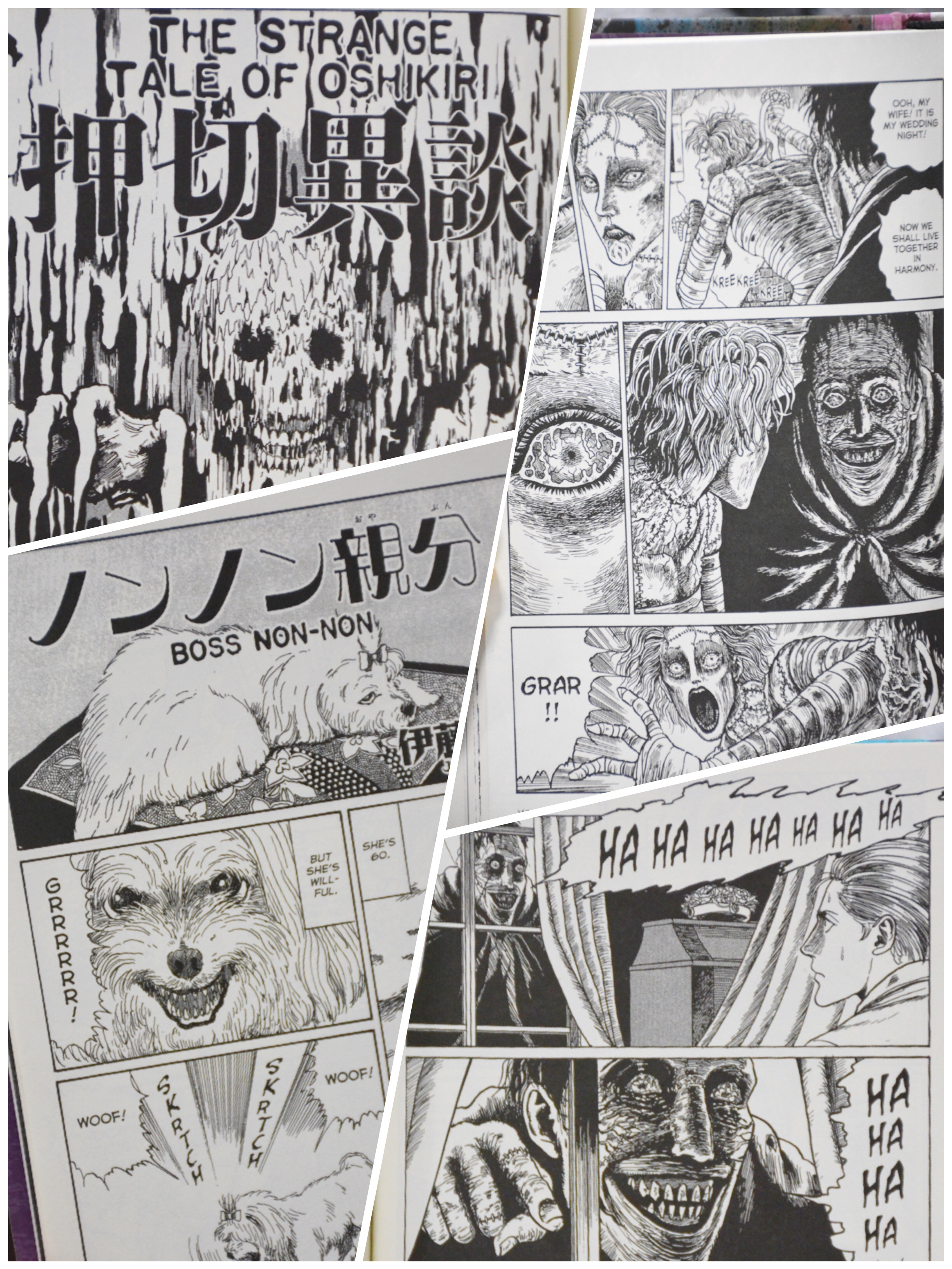Frankenstein Junji Ito Story Collection