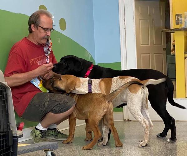 $1 Donation to AHeinz57 Pet Rescue & Transport