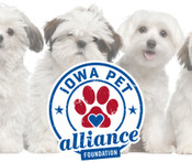 $1 Donation to Iowa Pet Alliance Foundation