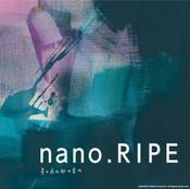 HOSHINO YORUNO MYAKUNO OTONO Standard Edition nano.RIPE CD (Import)