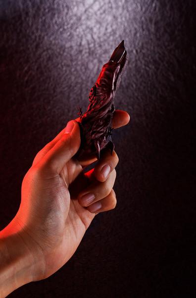 Ryomen Sukuna's Finger Special Grade Cursed object Jujutsu Kaisen Proplica