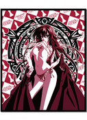 Rias In Red High School DxD Throw Blanket