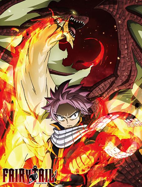 Raging Dragon Natsu Fairy Tail Throw Blanket
