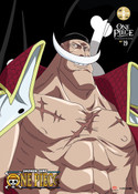 One Piece Collection 19 DVD Uncut