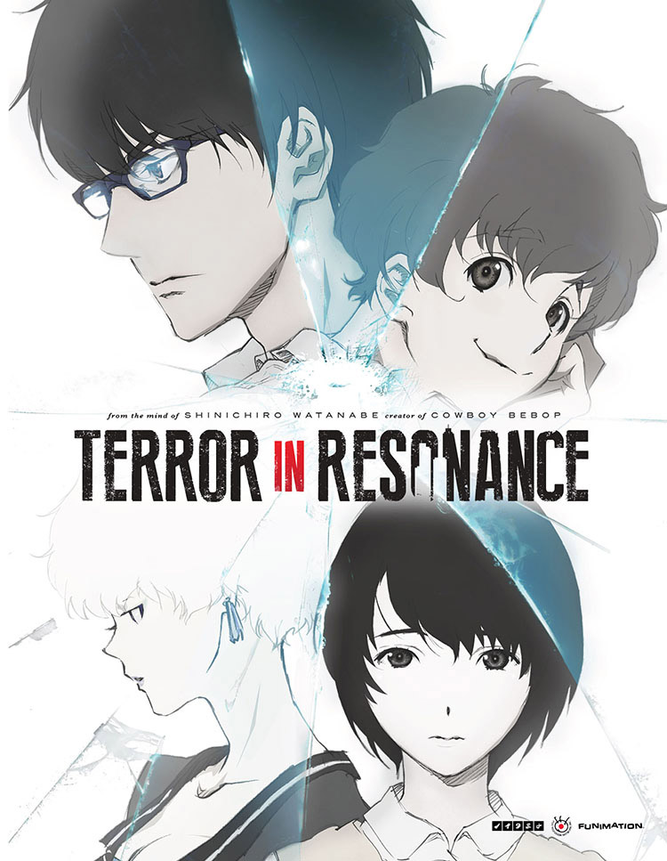 Terror in Resonance Limited Edition Blu-ray/DVD 704400017414