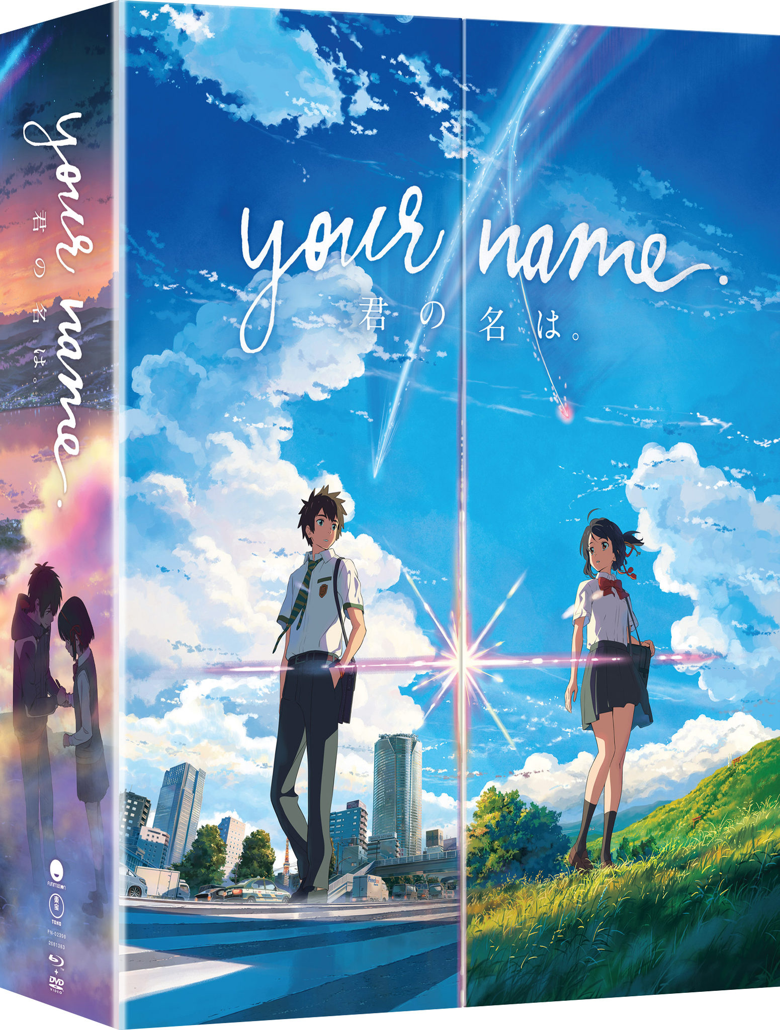 Your Name Limited Edition Blu-ray/DVD 704400023903