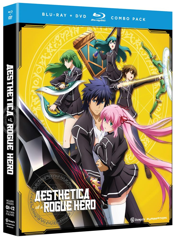 Aesthetica of a Rogue Hero Blu-ray/DVD