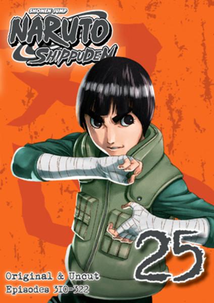Naruto Shippuden DVD Set 25 Uncut