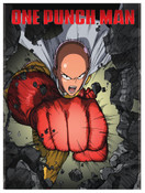 One-Punch Man Season 1 DVD