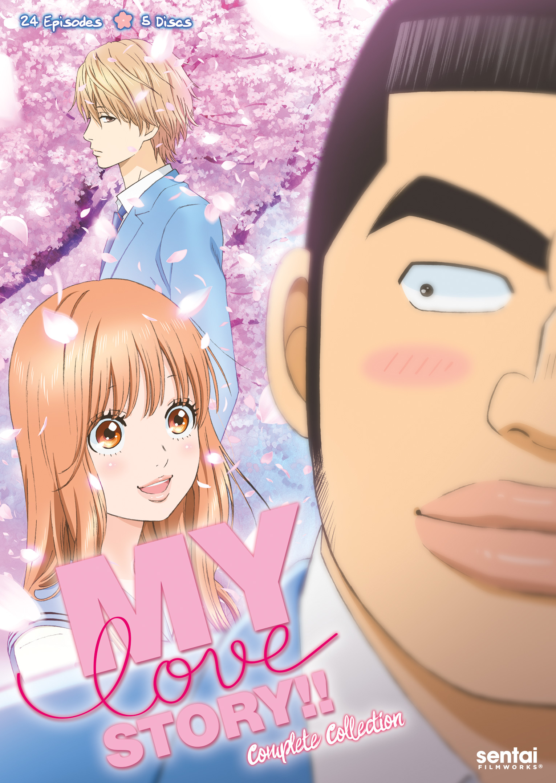 my love story dvd