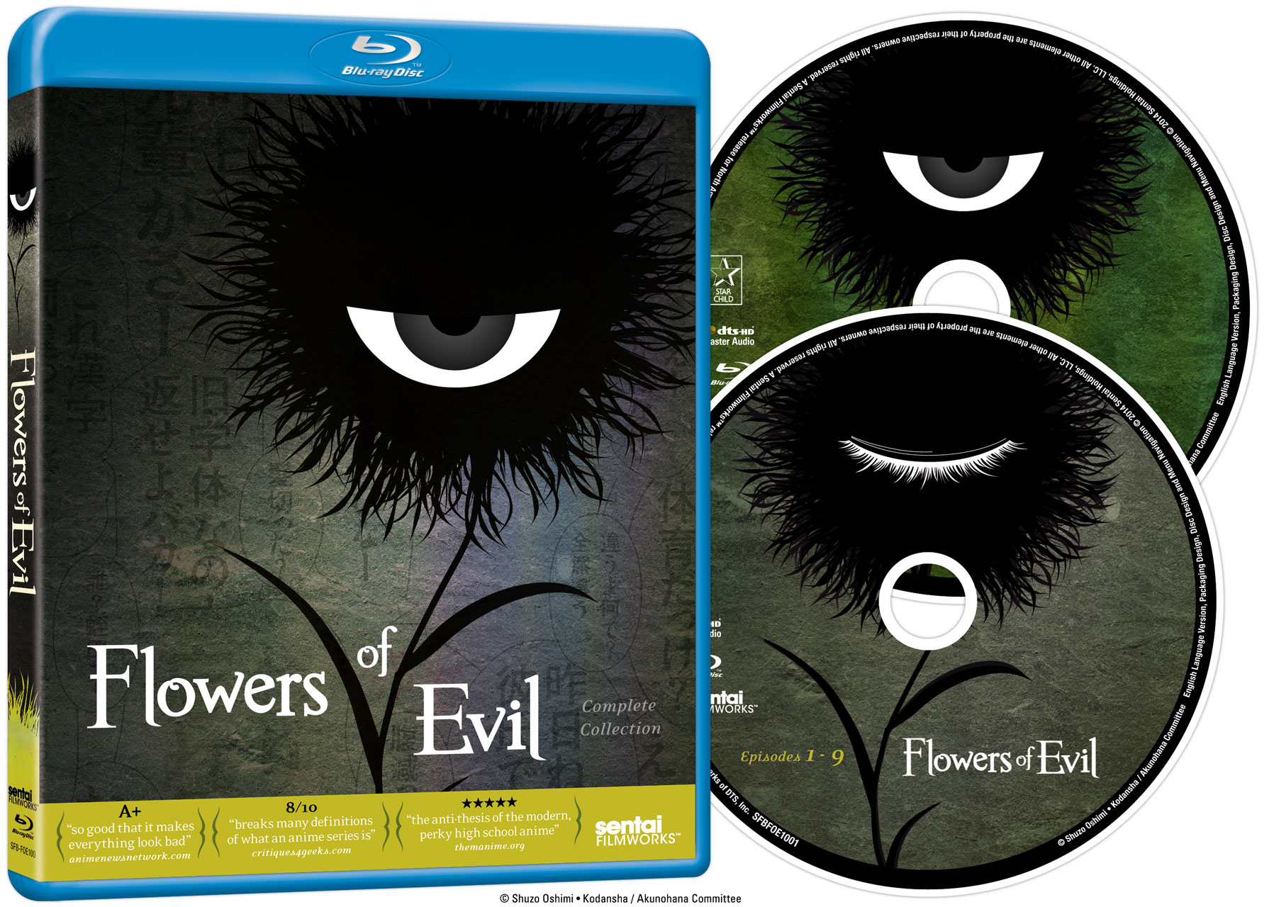 Flowers of Evil Blu ray