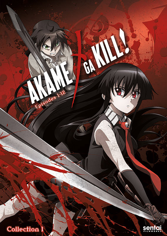 Image result for akame ga kill anime cover