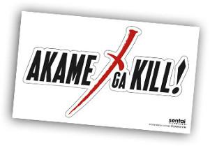Akame ga Kill Collection 1 Collector's Edition Blu-ray/DVD