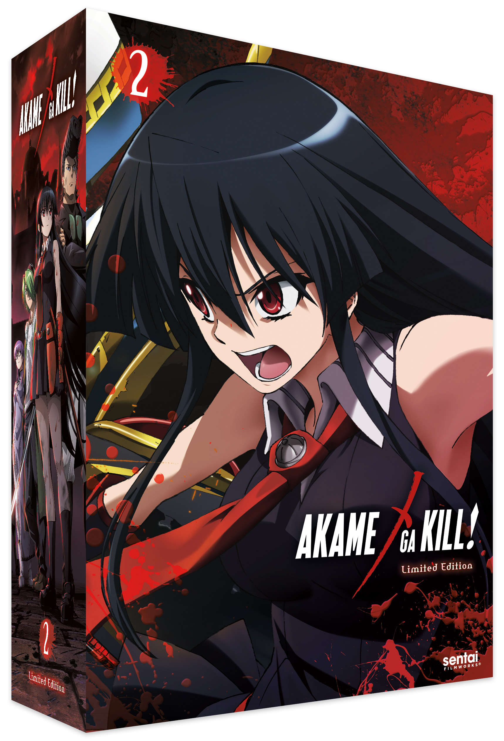 Akame ga Kill Collection 2 Limited Edition Blu-ray/DVD + CD 814131016782