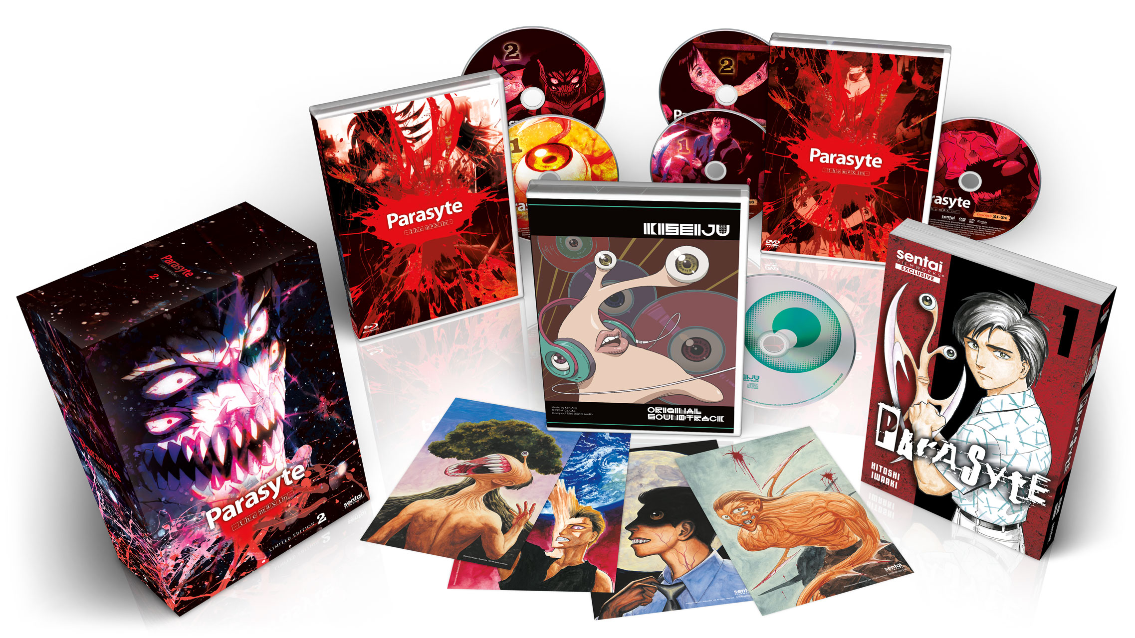 The right stuff dvd special edition : Kindaichi shonen no