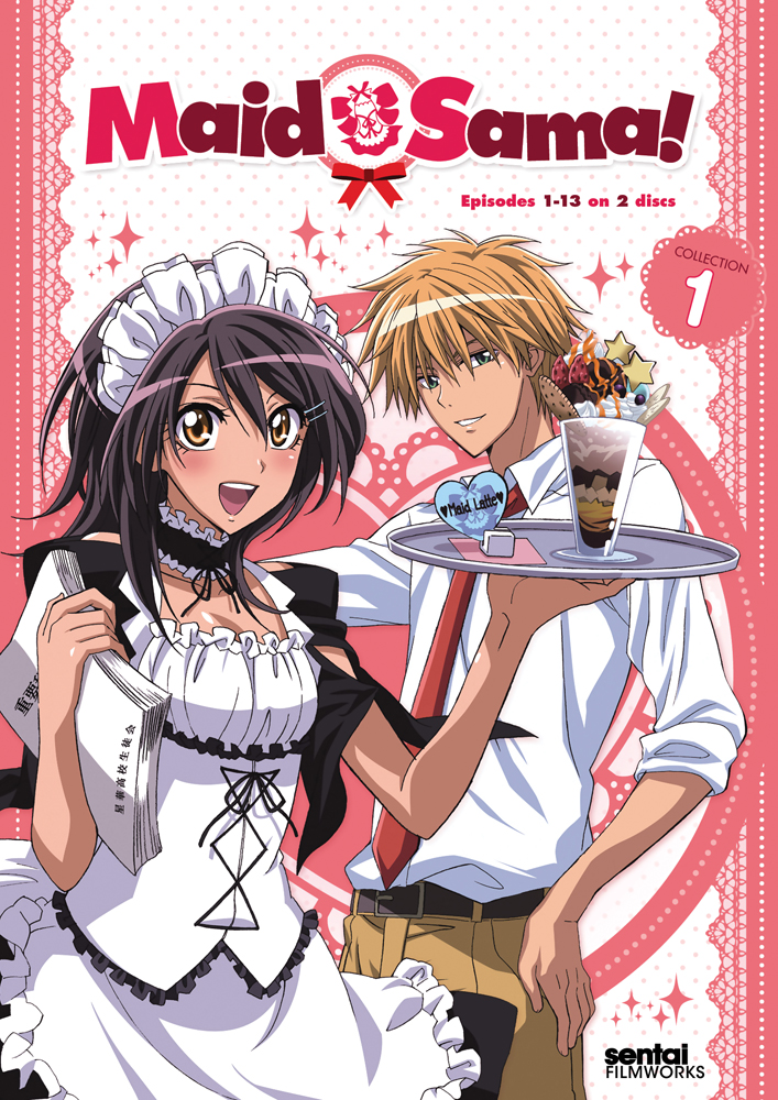Maid Sama Collection 2 Details