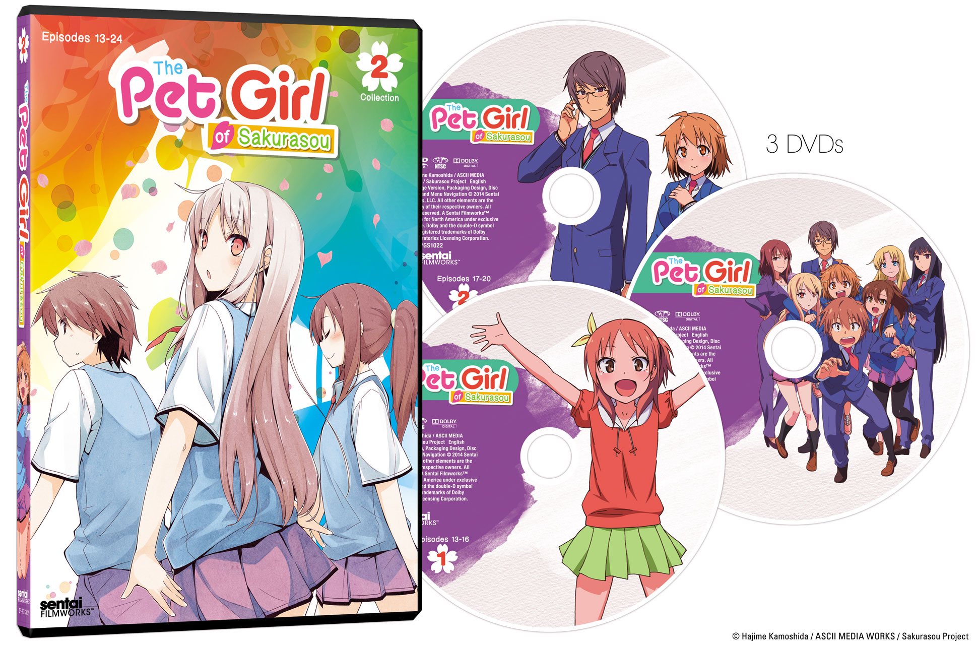 The Pet Girl of Sakurasou Collection 2 DVD