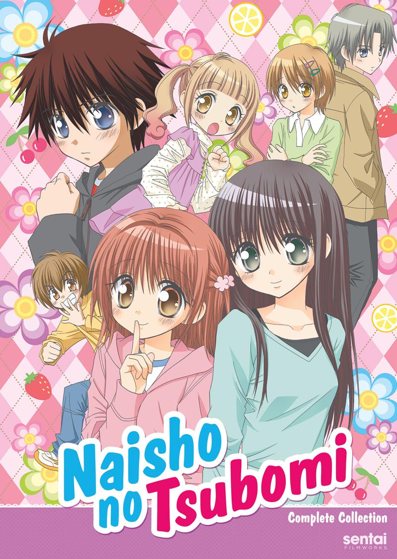 Naisho no Tsubomi DVD