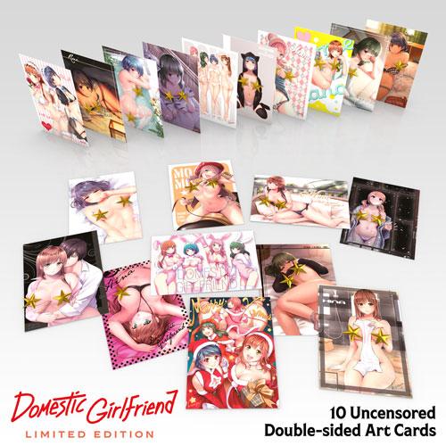 Domestic Girlfriend Premium Box Set Blu-ray
