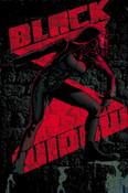 Black Widow by Kelly Thompson Volume 2 I Am The Black Widow Graphic Novel