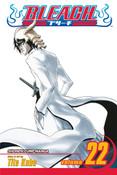 Bleach Manga Volume 22