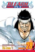 Bleach Manga Volume 28