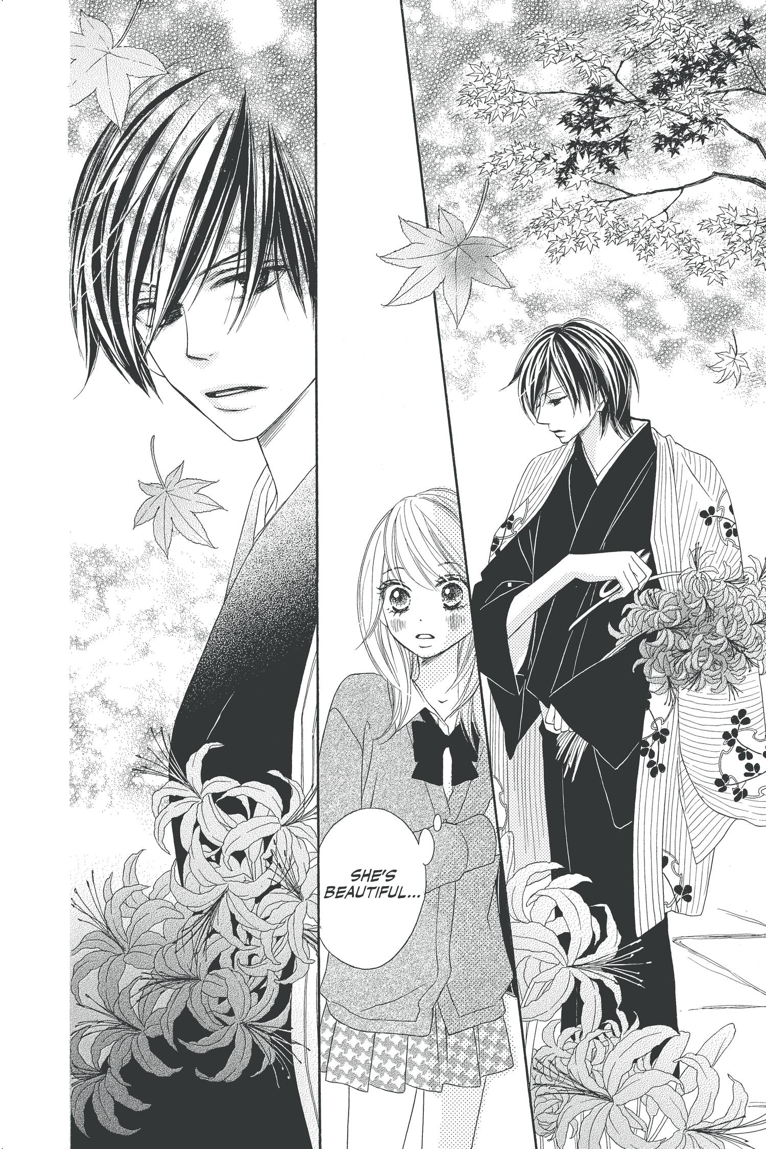 Black Bird Manga Volume 1