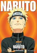 Naruto Illustrations Artbook