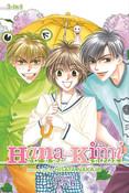 Hana Kimi 3 in 1 Edition Manga Volume 2