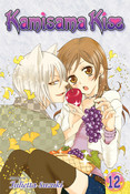 Kamisama Kiss Manga Volume 12