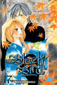 Black Bird Manga Volume 17