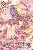 Sakura Hime The Legend of Princess Sakura Manga Volume 12