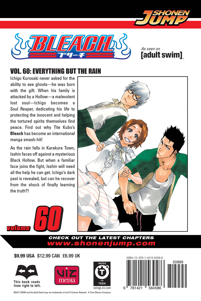 Bleach manga cover 60