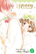 Honey So Sweet Manga Volume 3