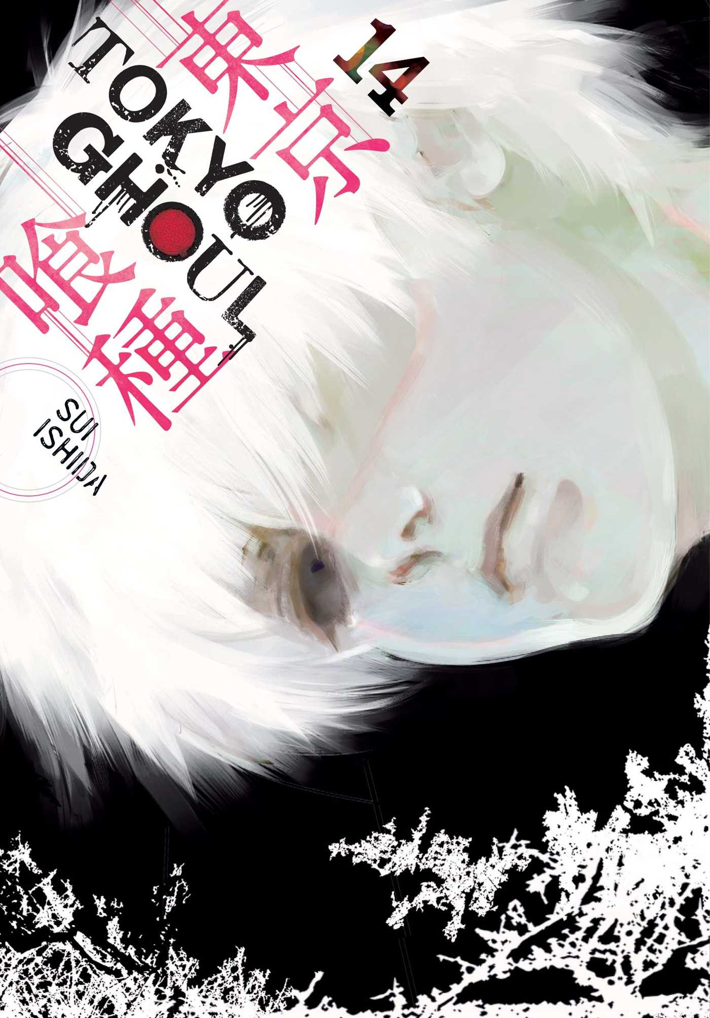 Tokyo Ghoul Manga Volume 14