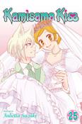 Kamisama Kiss Manga Volume 25