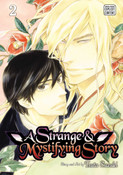 A Strange and Mystifying Story Manga Volume 2