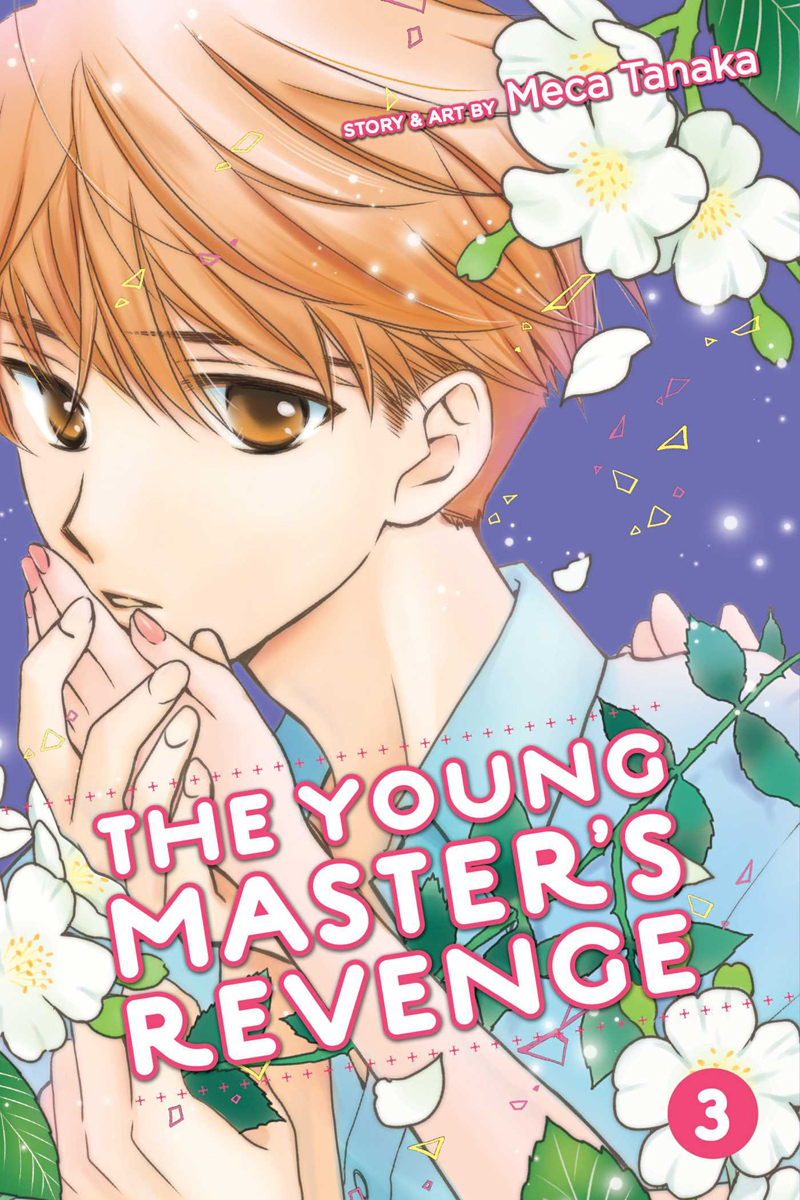 The Young Master's Revenge Manga Volume 3
