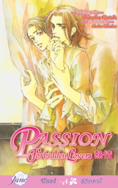 Passion Forbidden Lovers Novel