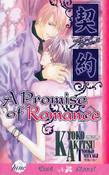 A Promise of Romance Novel