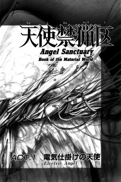 Angel Sanctuary Manga Volume 1