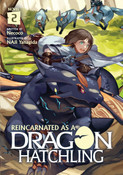 Reincarnated as a Dragon Hatchling Novel Volume 2