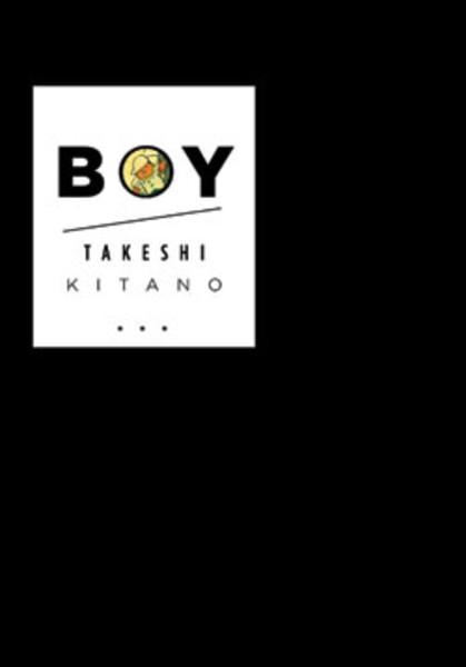 Boy Novel