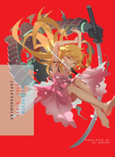 Onimonogatari Novel
