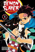 Demon Slayer Kimetsu no Yaiba Manga Volume 1