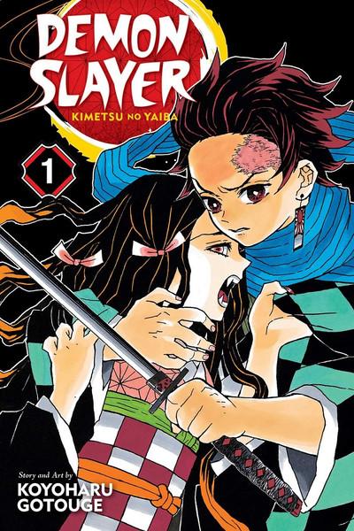 Demon Slayer Kimetsu no Yaiba Manga Volume 1