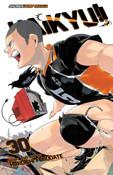 Haikyu!! Manga Volume 30