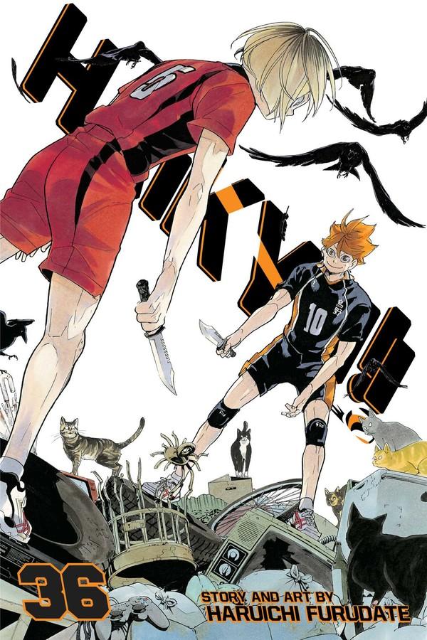 Haikyu!! Manga Volume 36