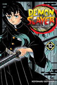Demon Slayer Kimetsu no Yaiba Manga Volume 12