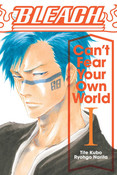 Bleach Can't Fear Your Own World Novel Volume 1